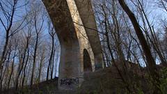 012crpaconfwl (citatus) Tags: park bridge toronto canada spring afternoon pentax ii underside ravine moor k3 2016