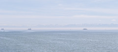 Lake Constance with Alps, swan, and ferry (Igor Sorokin) Tags: travel panorama lake alps water ferry germany boats high swan haze nikon key europe zoom pass scenic pale telephoto 1855 sailboats nikkor dslr bodensee constance waterscape d40
