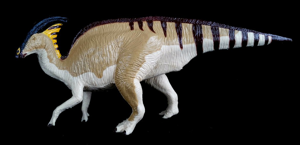 The Worlds Best Photos Of Northamerica And Ornithischian Flickr