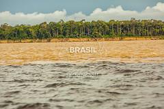 NO_Amazonas0710 (Visit Brasil) Tags: horizontal brasil natureza manaus norte amazonas ecoturismo externa rionegro semgente diurna encontrodasguas riosolimes