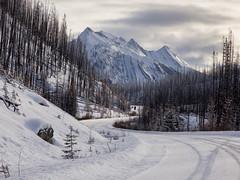 Maligne Lake Road (Keith Levit) Tags: jasper alberta jaspernationalpark malignelakeroad