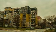 Sovyet Bloklar (svabodda) Tags: bulgaria plovdiv bulgaristan filibe