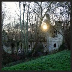 Parc de Blanquefort (Gironde) (mibric) Tags: park castle soleil pierre ruin ruine chateau arbre parc branche gironde