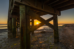 Good Morning Sunshine! (lkbuchanan) Tags: ocean camera sky beach sunrise sand texas places states fishingpier poc sunflare portoconnor hoizon texasbeach tokinalenses websitetags tokina1116 tokina1116mmwideanglelens nikond7100 lkbuchanan poctx laurabuchananphotography wwwlkbimagescom lkbimages
