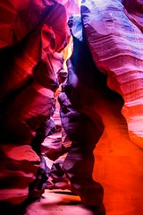 Nikon D810 Photos Antelope Canyon Red Sandstone Slot Canyons Page Arizona!  Dr. Elliot McGucken Fine Art Photographer (45SURF Hero's Odyssey Mythology Landscapes & Godde) Tags: nature fineart wideangle upper lower slotcanyons fineartphotography antelopecanyon naturephotography wideanglelens naturephotos redsandstone pagearizona fineartphotos upperantelope lowerantelope 45surf antelopecanyons fineartphotographer fineartnature fineartlandscapes elliotmcgucken elliotmcguckenfineartphotography elliotmcguckenphotography elliotmcguckenfineart herosodysseymythology masterfineartphotography drelliotmcguckenfineartphotographer andmorenikond810photosantelopecanyonredsandstoneslotcanyonspagearizonadrelliotmcguckenfineartphotographer slotcanhyons goldenheosodyssey