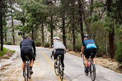 20160130_DSC00672_FromRaw (jerkfacesmile) Tags: griffithpark keepexploring ridejahbike