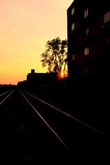 Yellow sun railroad (vinnie saxon) Tags: railroad sunset urban sun tree silhouette yellow fuji tracks fujifilm x100s