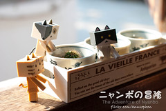 The Adventure of Nyanbo (= ann =) Tags: cat toy photostory yotsuba danbo danboard nyanboard