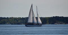 Sailing in Helsinki... (L.Lahtinen) Tags: sea sailboat landscape helsinki sailing helsingfors meri maisema waterscape nikond3200 purjevene purjehdus suomenlahti 55300mm