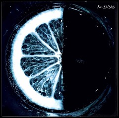 Dark side of the lemon moon