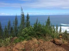 IMG_4736 (Marshen) Tags: hike kauai hanakapiaifalls