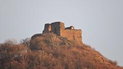 2016-02-03 Castle Kolov (beranekp) Tags: old castle history czech alt ruine hrad burg zcenina esk stedoho kol kolov