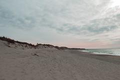 (ystein Aspelund) Tags: ocean winter light sea color beach norway sand seascapes silouette nordic desolate jren togetheralone bildekritikk