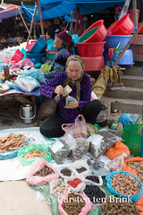 How much have I ... (10b travelling) Tags: woman money asian asia asien southeastasia vietnamese northwest market stall vietnam valley asie northern counting sapa laocai indochine indochina banknotes bacha 2015 bch locai otherkeywords tenbrink muonghoa carstentenbrink genericplaces iptcbasic 10btravelling