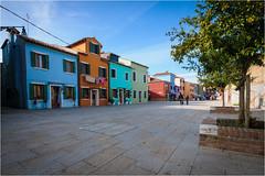 141101 burano 538 (# andrea mometti | photographia) Tags: venezia colori burano merletti