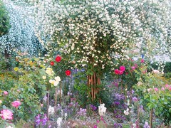 generalife - primavera (marianthipostcard) Tags: travel flowers garden spring spain catchycolours andalucia granada generalife alambra