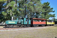 DS_Train_14_McLeansIsland_10April2016 (nzsteam) Tags: price train island traction engine railway scene steam engines locomotive boiler boilers mcleans sawmilling