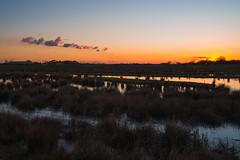 Wetlands (joshuacolephoto) Tags: uk travel blue sunset england orange lake holiday colour nature water clouds 35mm landscape ed evening spring pond nikon exposure g wildlife yorkshire journey wetlands d750 series nikkor unexpected expanse 2016