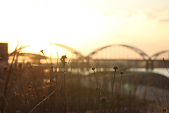 Sunset on the Mississippi (Rhadonda1) Tags: bridge sunset centennial