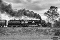 Steam at Speed (Matt Toms Photography) Tags: railroad travel heritage speed nikon trains steam panning railways steamtrain trackside svr severnvalleyrailway bulleid 34027 tawvalley d7100 railwayphotography 34027tawvalley