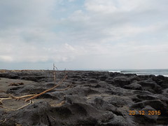DSCN1830 (petersimpson117) Tags: pantai seseh