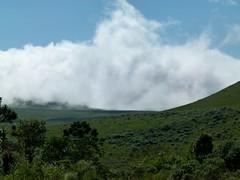 (IgorCamacho) Tags: autumn fall nature fog clouds landscape natureza foggy paisagem nubes nuvens nvoa nevoeiro serragacha