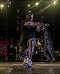 PUBLIC ENEMY @ Jambo 2014 @ 01 - 2857 (hanktattoo) Tags: black public animal one d hard carl soul funk chuck panthers hip hop rhyme enemy iconography rhymer politic numer ridenhour