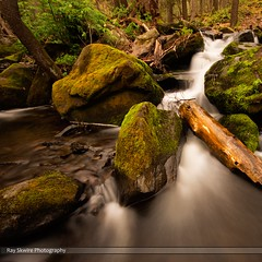 DSC_6569 (Ray Skwire) Tags: mountains nature river outdoors rocks pennsylvania pa waterfalls gorge bushkill bushkillfalls