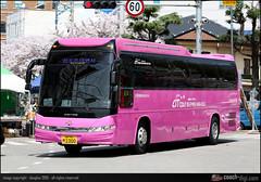 70  2300, Daewoo BH120F Royal Cruiser II (Coach-digi.com) Tags: daewoo bh120f koreanbus bh120  businkorea ii