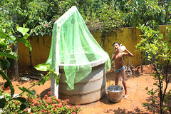 Bathing in the sun (Nagarjun) Tags: kerala well kiran alfresco kanishka kinu aluva