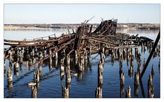 Nest Mess (Pro-Zak) Tags: abandoned industry pier newjersey waterfront decay prozak rail pilings urbex arthurkill coaldumper timothyvogel