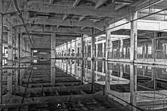 Disturbance of Symmetry (EccE LuX) Tags: blackandwhite monochrome architecture reflections de point mirror ruins noir noiretblanc decay hangar miroir vanishing et blanc industriallandscape lignes ruines fuite forgottenplaces frichesindustrielles paysageindustriel lieuxoublis sigma35mmf14art nikond750