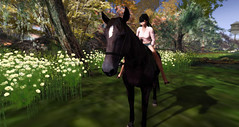 Horseback Riding 1 (Jill Jillybean) Tags: horse woman girl country cowgirl horseback