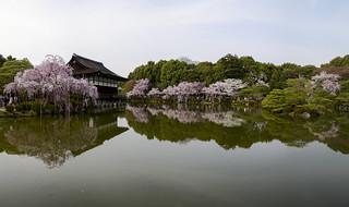 Heian-jingu in Spring 春の平安神宮