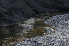 river Dzhubga (Kira Pichano) Tags: voyage travel mountain water del ro forest montagne river de reisen eau wasser fiume rivire viajes bosque caucasus della montaa fluss acqua montagna fort corsa foresta kuban kaukasus     bergwald colonels  caucase caucaso cucaso   dzhubga