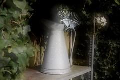 Zinken lampetkan (- - Anne - -) Tags: 35mm vintage fuji outdoor doubleexposure f14 stilleven jug tuin stillife brocante zink galvanised xt1 lampetkan