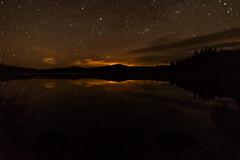 Galloway Forest Park-8963 (pewatts) Tags: stars outdoors scotland april nightsky darksky starrynight dumfriesandgalloway gallowayforestpark