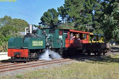 DS_Train_1_McLeansIsland_09April2016 (nzsteam) Tags: price train island traction engine railway scene steam engines locomotive boiler boilers mcleans sawmilling