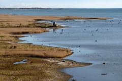 Bunkeflo Strandngar (Hkan Dahlstrm) Tags: sea photography se skne sweden coastline cropped malm f71 resund 2016 skneln bunkeflostrand bunkeflo vster strandngar xe2 sek xc50230mmf4567ois 8411042016173857