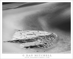 Exposed Playa, Dunes (G Dan Mitchell) Tags: california park blackandwhite usa nature monochrome america landscape sand mud dunes north playa surface national mesquite deathvalley intimate exposed