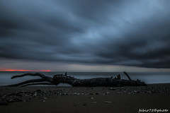 117#365 Fusioni (Fabio75Photo) Tags: sunset sky tramonto mare blu cielo ramo lunga esposizione fusione