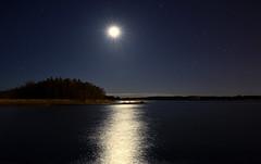 Nighty Night III (Kojaniemi) Tags: longexposure sea cloud moon reflection reed night forest island star shore april beacon isle springtime archipelago kimmoojaniemi kojaniemi