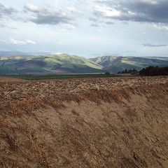 (Ryan Dickey) Tags: sun spring valley fields rollinghills wallawalla