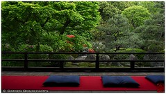 Ready for meditation (Damien Douxchamps) Tags: japan temple kyoto    kansai japon   kinki higashiyama       subtemple keninji  shodeneikenin