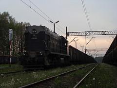 TEM2-295 (MarSt44) Tags: train private diesel tamara poland polska railway ctl małopolska kolej kwk tem2 brzeszcze tem2295