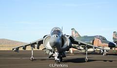 AV-8B Harrier II (LRPerkins) Tags: usmc nevada marines reno usn cas mcdonnelldouglas harrierjumpjet unitedstatesnavy av8b stead spanishnavy fighterjet renoairraces italiannavy vstol xve vx9 closeairsupport rollsroycepegasus