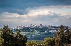 Pesaggio in collina; Mottola (vi.liuzzi) Tags: panorama alberi natura sole paesaggio collina cucuzzolo mottola