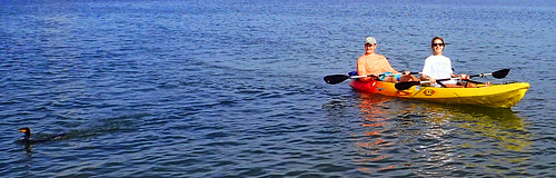 12_31_15  paddleboard kayak tour Lido Key 24