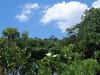 7/366 A good place to relax (JessicaBelotto) Tags: trees nature natureza paisagem céu days honey fotografia projeto árvores fotográfico núvens fotografando 366 366daysofhoney 366diasnoano