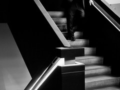 man descending a staircase, no 2. (donvucl) Tags: blackandwhite stairs composition interior staircase figure donvucl olympusem1